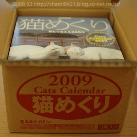 20080913_nkmkr2009_003_sonet.jpg